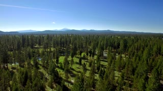 Aerial view of Oregon forest and stream by mountainside and blue sky