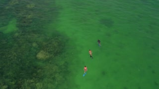 Aerial view of people snorkeling in clear ocean 4