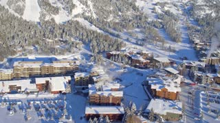 Aerial view of snow covered village and forest