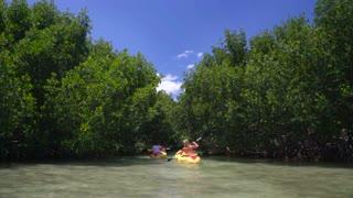 Couple kayaks in clear ocean under tropical trees 2