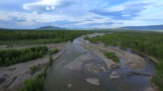 Drone view of green forest by flowing stream 2