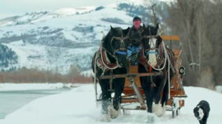 Horse and carriage follow dog alongside river and snow covered mountains 6