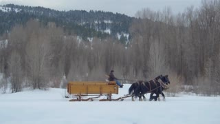 Horse and carriage follow dog through snow and mountains 2