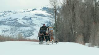Horse and carriage travel through snow trail by mountains