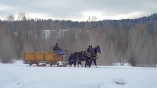 Horse pulls carriage through the snow with mountains in the background 2