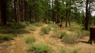Mountain biker rides through Oregon bike trail 2