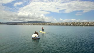 Person paddle boards by a sea lion on a buoy