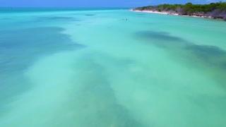 Couple Snorkeling in Tropical Ocean