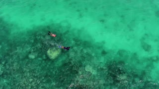 Couple Snorkeling in Tropical Water