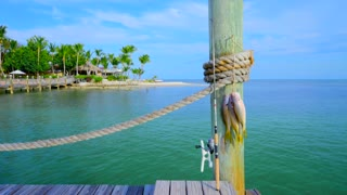 Fish and Fishing Pole on Tropical Dock Tracking Shot