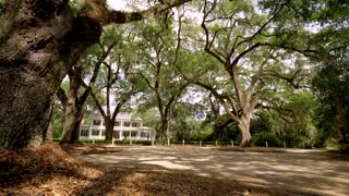 Historic Baton Rouge House with Trees