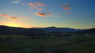 Napa Valley Vineyard at Sunset by Aerial Drone