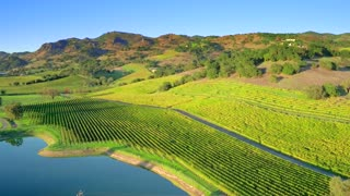 Napa Valley Vineyard with Pond at Sunset by Aerial Drone