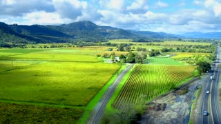 Napa Valley Vineyards by Aerial Drone