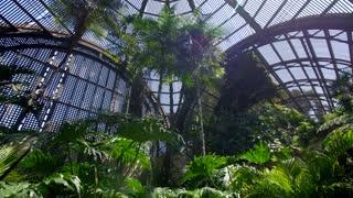 The Botanical Garden at Balboa Park