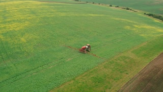 Aerial. Flying Over the Field With a Canola. Agriculture Tractor Spraying Summer Crop Canola Field