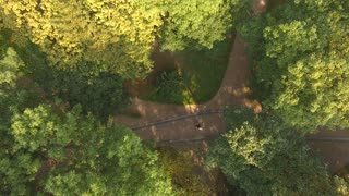 Aerial Video Newlyweds are Circling in the Dance Through the Trees 4k uhd
