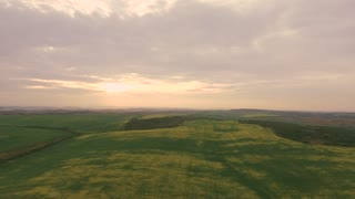 Aerial video Tractor Equipment Fertilize Spray Agriculture Canola Crop Plant Field near Forest in sunset