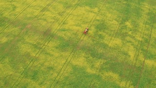 Aerial View of Tractor Spraying Canola Field