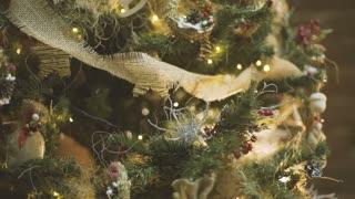 Christmas Day Celebrate