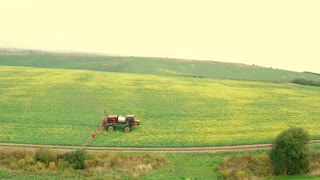 Flying Over the Field With a Canola. Agriculture Tractor Spraying Summer Crop Canola Field