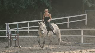 Horse Riding On the Training Ground