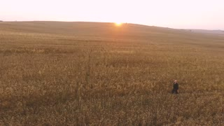 Man Walking Through Wheat Field at Sunset
