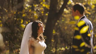 Wedding Bride and Groom Kissing on the Walk. Happy emotions
