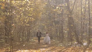 Wedding Bride And Groom Walk in a Autumn Forest. Happy moments. Slow motion