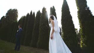 Wedding Bride And Groom Walk in a Botanical Garden. Love day