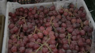 red grapes in a store