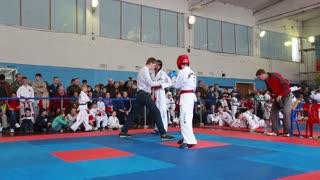 Taekwondo Tournament among juniors in Russia