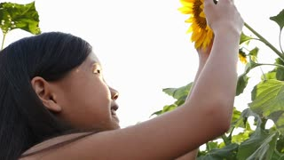 00:23 | 00:27 1×  A cute Asian girl kissing sunflower in an open field with sunlight, Slow motion shot