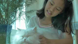 4K : Lovely Asian girl plays with her Persian cat