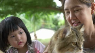 4K : Lovely little Asian girl and mother playing with Persian cat