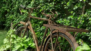 4K : Retro Vintage bike parking on a green garden, Vintage decoration concept