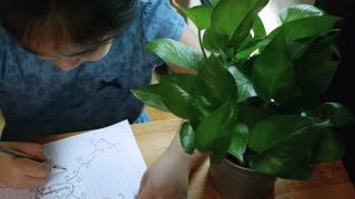 4K : Top view of Little Asian child drawing her mind map, Pan shot