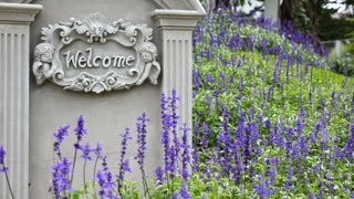 4K : Welcome sign on stone background with lavender flower