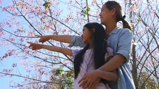 Asian mother and daughter enjoy with cherry blossom