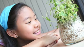 Close up of Asian child looking a little green plant, Slow motion shot