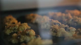Cookies on a baking tray in the oven close up, Pan shot
