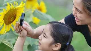 Happy Asian girl and mother looking sunflower with magnifying glass