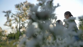 Slow motion of Happy Asian girl kissing her mother in the flower field with sunlight