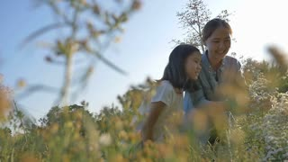 Slow motion of Happy Asian girl looking flower with her mother in the flower field with sunlight