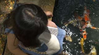 Slow motion girl playing with fancy carp fish in the pond