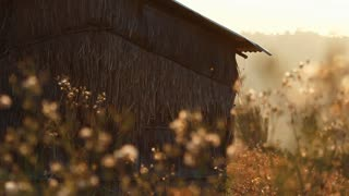 Vintage old hut with grass field on the mountain in the morning, Pan camera