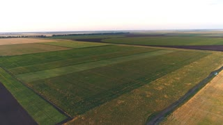 aerial view on Agricultural Landscape