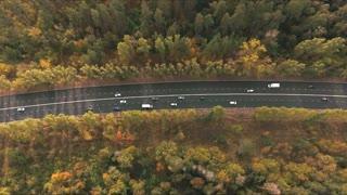aerial view on highway in wood