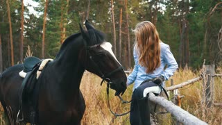 Beautiful girl cares for her horses. Focus on the girl