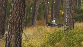 girl riding a horse walking in the woods